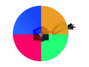 Elimex - 4 colour disk for 60001